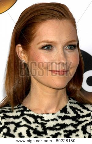 LOS ANGELES - JAN 14:  Darby Stanchfield at the ABC TCA Winter 2015 at a The Langham Huntington Hotel on January 14, 2015 in Pasadena, CA