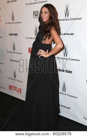 LOS ANGELES - JAN 11:  Terri Seymour at the The Weinstein Company / Netflix Golden Globes After Party at a Beverly Hilton Adjacent on January 11, 2015 in Beverly Hills, CA