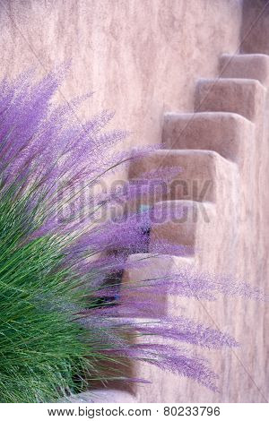 Adobe Wall And Purple Grasses