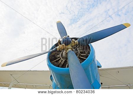 The Engine And Propeller Plane
