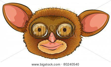 Illustration of a tarsier head