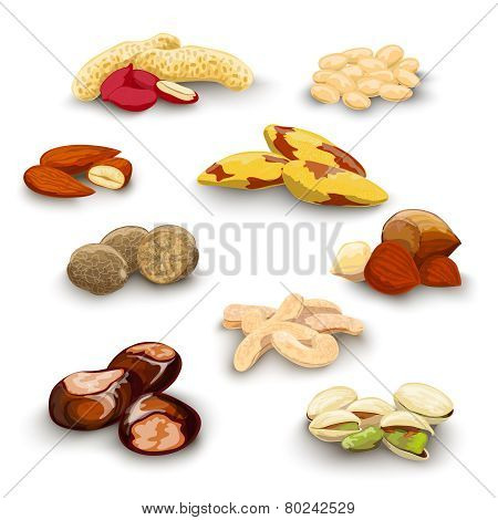 Nuts Decorative Set