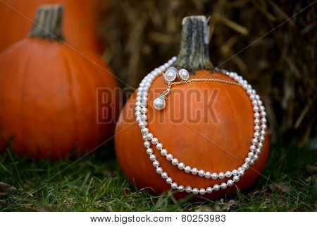Wedding jewelry on a pumpkin