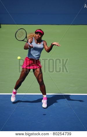 Grand Slam champion Serena Williams during quarterfinal doubles match at US Open 2014