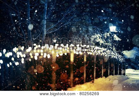 Holiday Lights Scenery