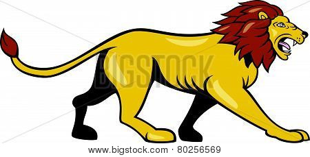 Angry Lion Walking Roar Cartoon