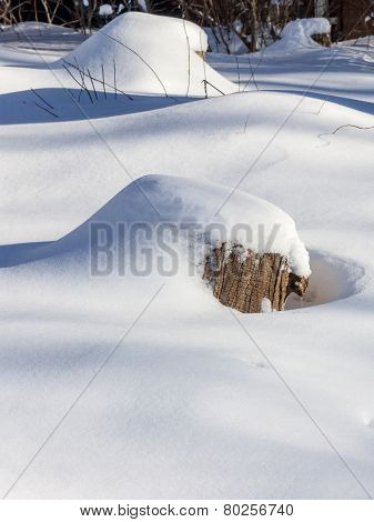 Stump Under Snow