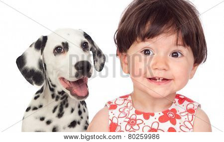 Funny baby with a beautiful dalmatian dog isolated on a white background