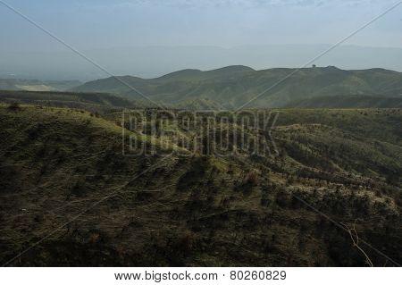 Hazy overlook of hills with burnt trees regrowing