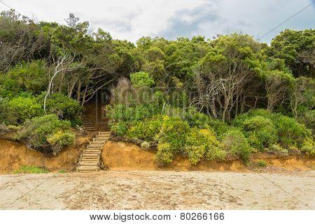 Casa Violina Beach