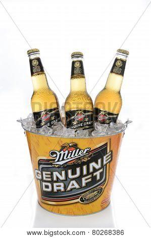 Mgd In Branded Ice Bucket