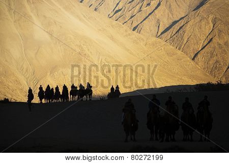 silhouette of caravan travellers riding camels Nubra Valley Ladakh ,India - September 2014