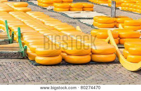 Cheese market in Alkmaar, The Netherlands
