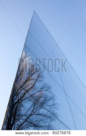 Glass Facade And Reflection Of Trees