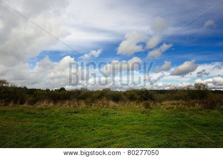 Withering Grass And Cloudy Sky In Early Fall