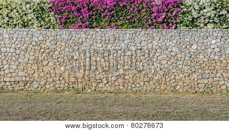 Decorated Bougainvillea Flower On Wall