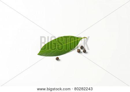 fresh bay leaf and peppercorns on white background
