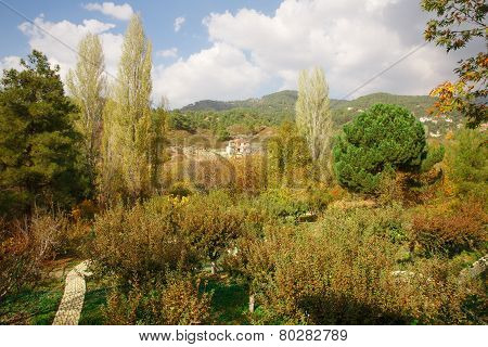 Cyprus Village In Mountains
