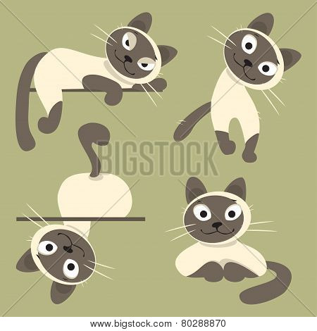 Set Of Siamese Cats. Vector Illustration