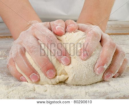 Hands Closeup Kneading Dough