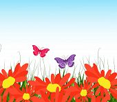 picture of fellowship  - Spring is coming  with grass and flower - JPG