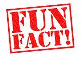 stock photo of fascinating  - FUN FACT - JPG