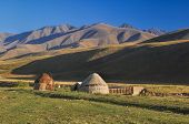 picture of yurt  - Traditional yurts on green grasslands in Kyrgyzstan - JPG