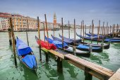 pic of gondola  - A view of empty gondolas moored and lined up at a gondola dock in a water canal in Venice Italy - JPG