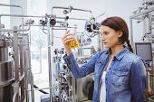 picture of beaker  - Stylish brunette in denim jacket looking at beaker of beer in the factory - JPG