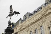 picture of ero  - Angel statue with bow and arrows known as Shaftesbury in London - JPG