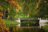 image of tsarskoe  - Autumn landscape in Pushkin city near St - JPG