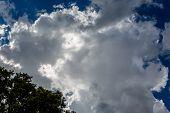 picture of cumulus-clouds  - Large Stormy Dark Cumulus Cloud - JPG