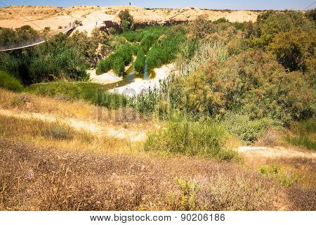 Suspension bridge and  Besor Brook  in Eshkol National Park, Negev desert. Israel