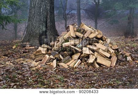 Large Pile Of Fresh Cut Wood
