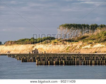 Groynes On The Baltic Sea Coast