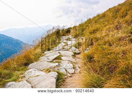 Path In Tatra Mountains