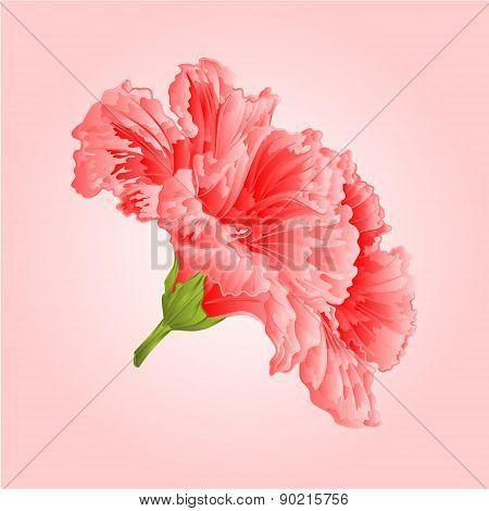 Pink Hibiscus Vekctor