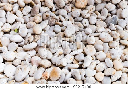 Decoration White Rock Floor Pattern