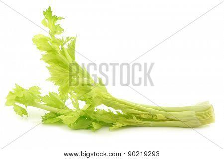 fresh celery stems on a white background