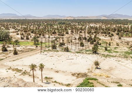 Tafilalt oasis in Morocco - view from Tinrheras ksar