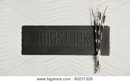 Black board in the sand with spikes of a hedgehog for natural decoration.