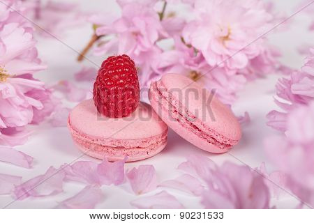 Traditional french macaroons