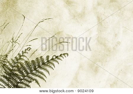 Textured background with fernery and space for text or image - scrapbooking