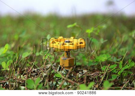 Yellow water valve in the middle of plants