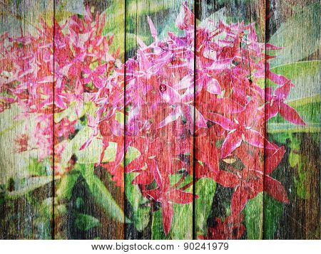 Ixora Flower On Wood Texture
