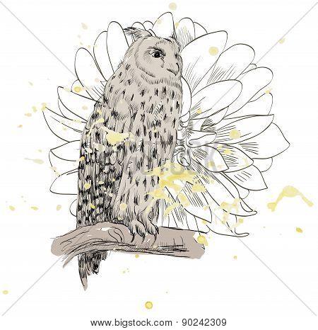sketch of a owl