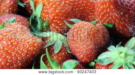 temptations: ripe red Strawberry background