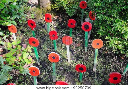 Wooden memorial poppies, Shrewsbury.