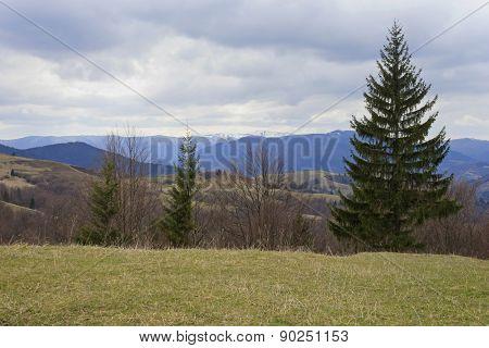 Carpathian Mountains At Spring
