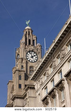 Royal Liver Building 08